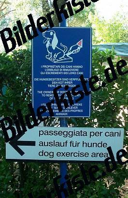 Hundekot beseitigen