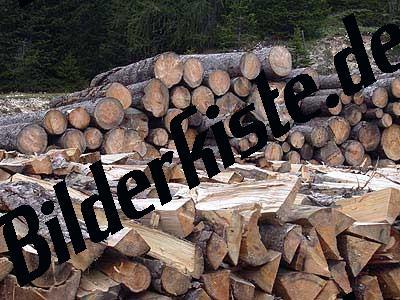 Schichtholz