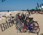 Bilder zum Thema fahrrad anzeigen
