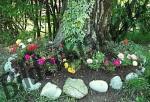 Blumen am Baumstamm