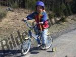 Bilder zum Thema casco anzeigen