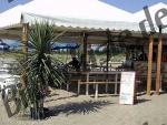 Strandbar mit Palmen