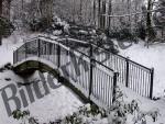 Bilder zum Thema kalt anzeigen