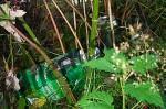 Getraenkekarton und Dose im Gras