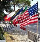 Bilder zum Thema bandiera anzeigen