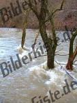 Bilder zum Thema acqua anzeigen