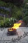Bilder zum Thema grill anzeigen