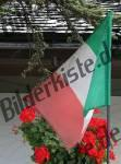 Bilder zum Thema italienflagge anzeigen